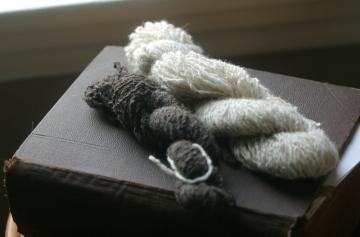 woolies_yarn